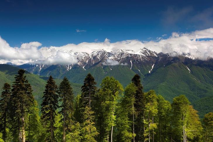 Подняться на смотровую площадку в горах