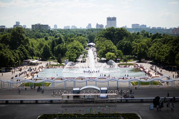 Дружественный пикник в «Парке Горького»