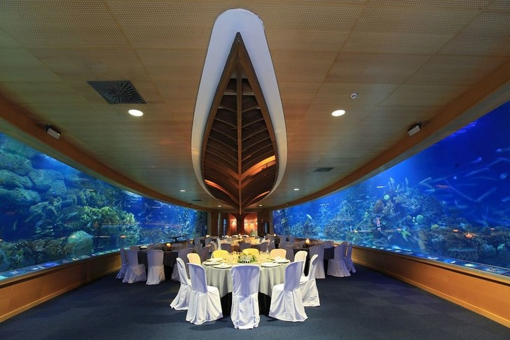 Полное погружение: топ-10 лучших подводных ресторанов (фото 20)