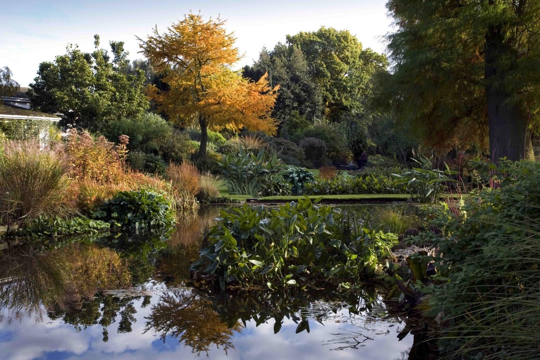 Модные сады в стиле mid-century modern (галерея 14, фото 5)
