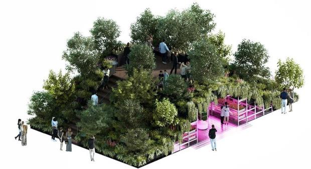 RHS Chelsea Flower Show 2019: сад будущего Тома Диксона и ИКЕА (фото 4)