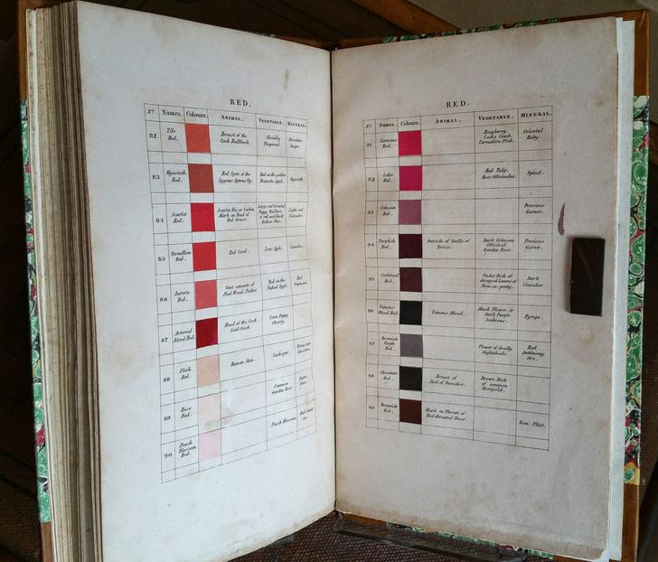 Классификатор цветов XIX века (фото 0)