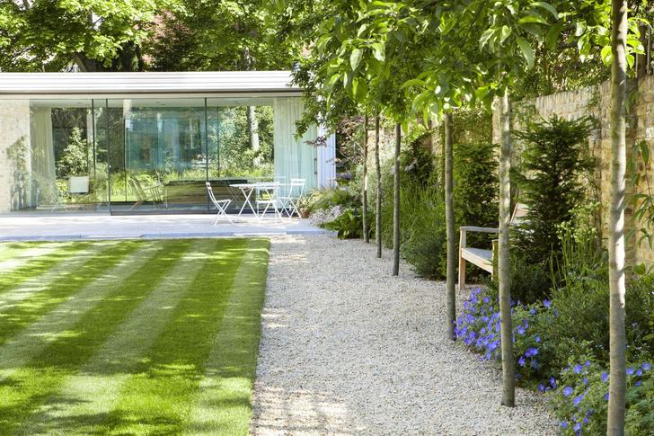 Модный сад круглый год: советы экспертов (фото 5)
