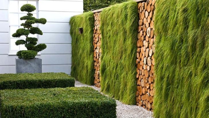 Модный сад круглый год: советы экспертов (фото 17)