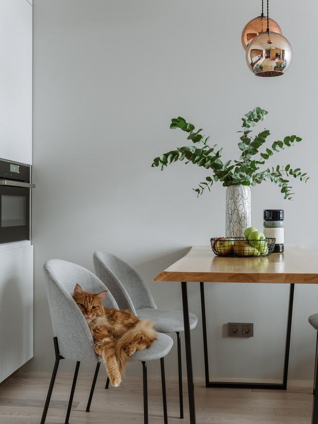 Как сделать свой дом счастливым: 5 советов (фото 7)