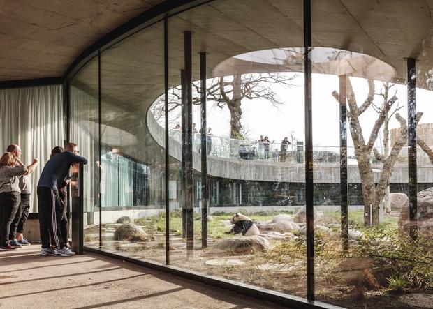 В зоопарке Копенгагена построили дом для панд (фото 4)
