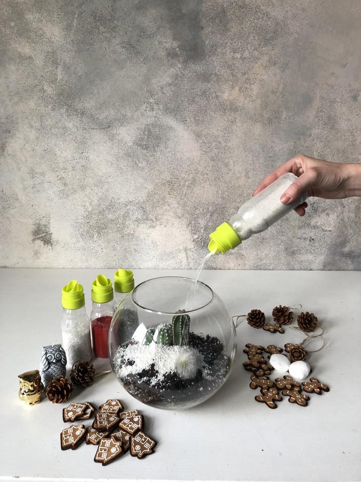Как сделать зимний флорариум своими руками (фото 13)