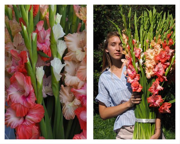 Как гладиолусы стали модными цветами и как правильно за ними ухаживать? (фото 3)