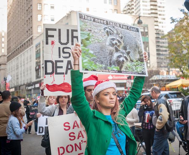 Лос-Анджелес отказался от продажи меха (фото 3)