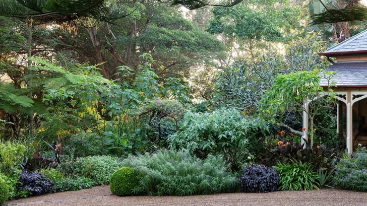 Дом и сад Бронте в центре Сиднея (фото 11)