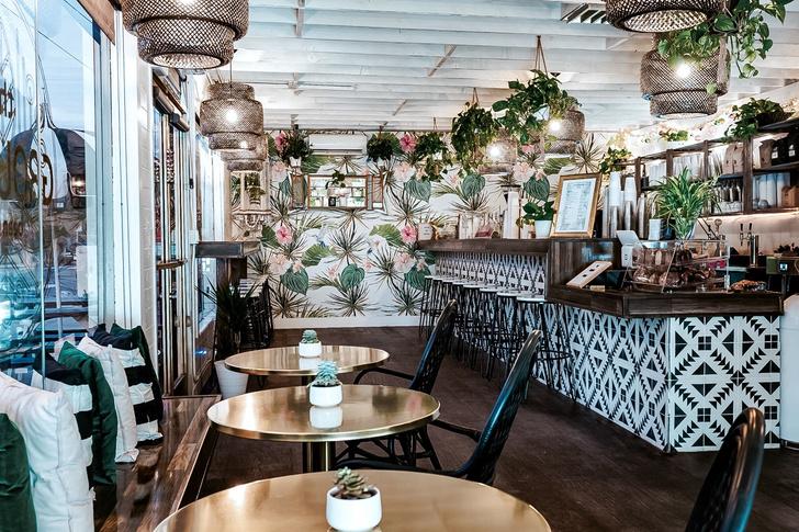 Тропическое кафе в Калифорнии (фото 3)