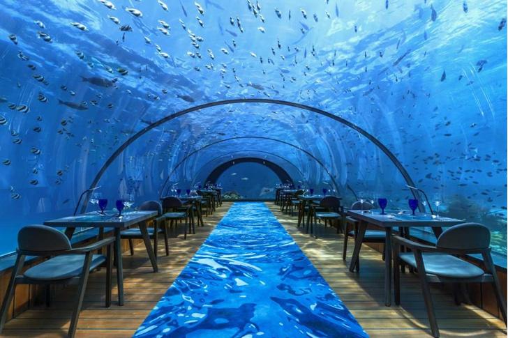 Полное погружение: топ-10 лучших подводных ресторанов (фото 33)