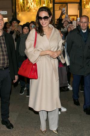 Фото дня: Анджелина Джоли в Париже (фото 1)