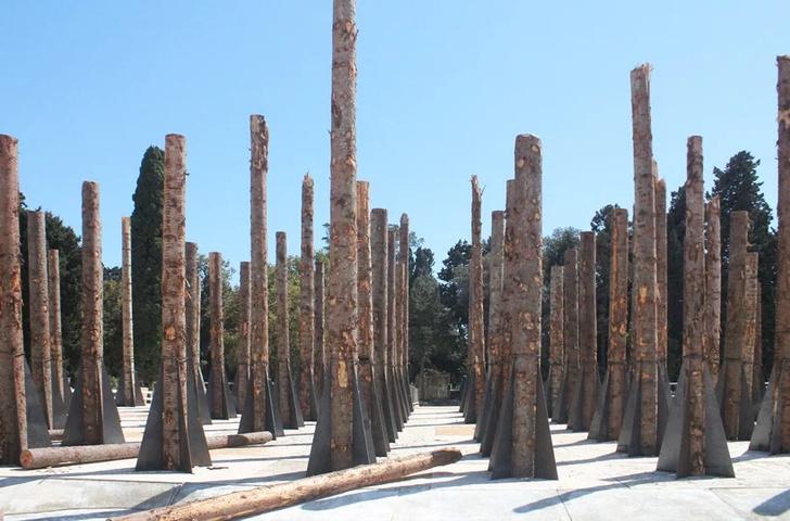 «Мертвый лес» Стефано Боэри в Сиракузах (фото 4)