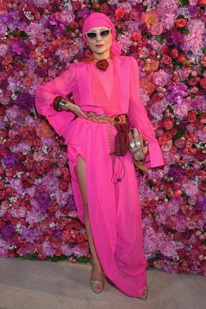 Звезды на показе Schiaparelli Couture в Париже (фото 2.1)