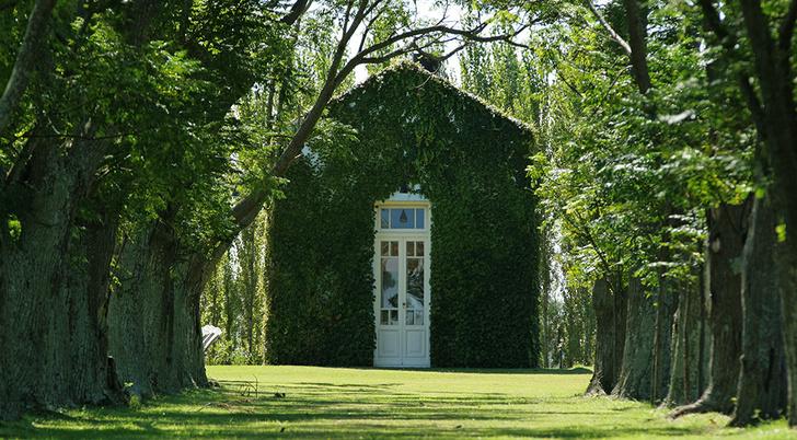 Любое строение впишется в пейзаж, если увить его фасад диким виноградом.