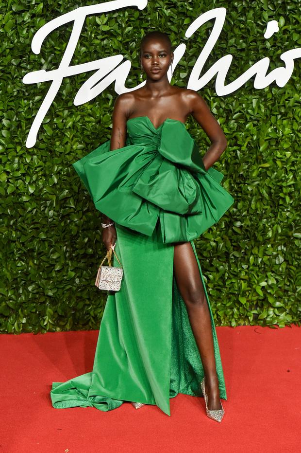 Сад цветов: все модели на премии British Fashion Awards (фото 1)