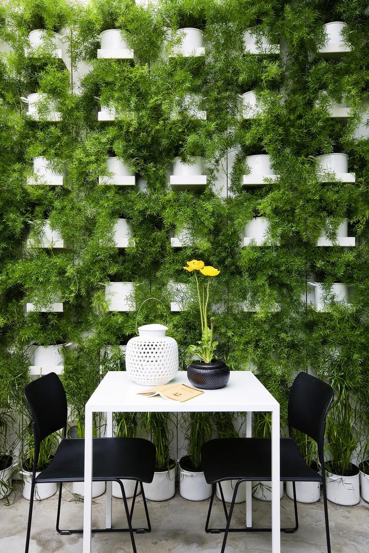 Практика: зеленые стены (фото 9)