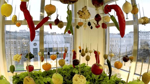 Куда идет мировой ресторан: 5 выводов гастрономической выставки Sirha (фото 12)