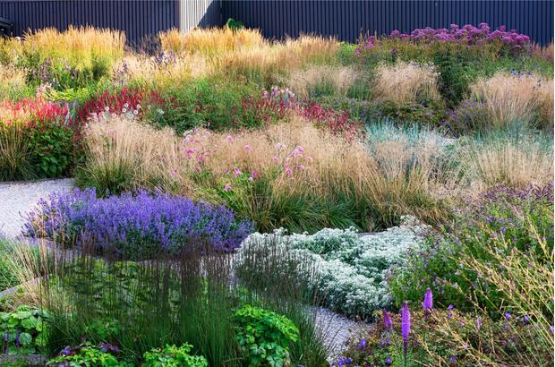 Многая лета: сад трав в Санкт-Петербуре по проекту бюро «Мох» (фото 6)