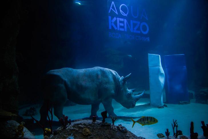 Диво дивное: Kenzo поместили носорога в огромный аквариум (фото 1)