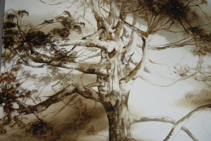 «Природа жизни»: выставка Клер Баслер в Москве (фото 0)