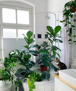 Стильная ванная комната: 10 актуальных трендов (фото 41.2)
