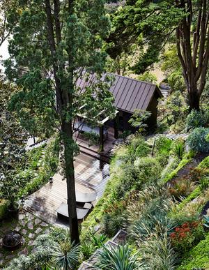 Эклектичный сад на берегу реки в Австралии (фото 4.2)